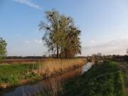 řeka Kyjovka